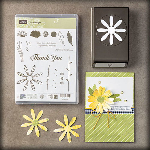 Daisy Delight Photopolymer Bundle at WildWestPaperArts.com
