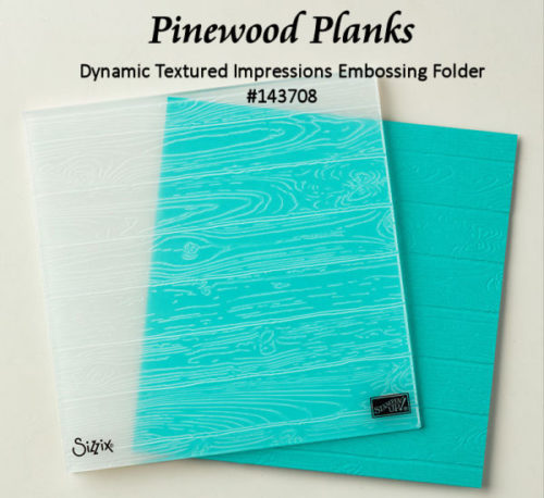 Pinewood Planks Dynamic Textured Impressions Embossing Folder at WildWestPaperArts.com